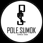 Поле сумок Logo
